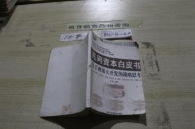 民间资本白皮书 关于西部大开发的战略思考 影印版