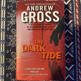 【英文原版小说】THE DARK TIDE by Andrew Gross New York Times Bestseller