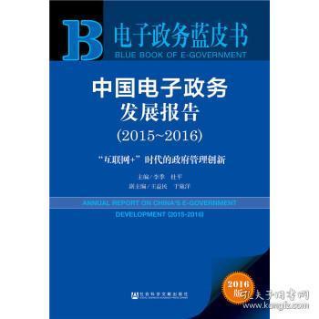 2015-2016-中国电子政务发展报告-互联网+时代的政府管理创新-电