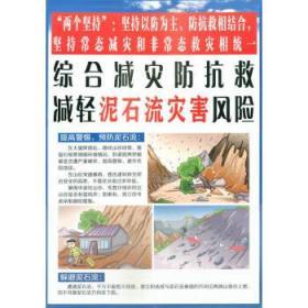 综合减灾防抗救,减轻泥石流灾害风险 综合减灾减轻灾害风险编委