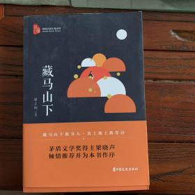 藏马山下(跨度长篇小说文库)