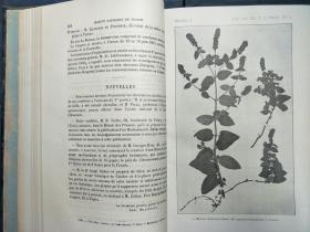 BULLETIN  DE   LA  SOCIETE  BOTANIQUE   DE  FRANCE(1903)
