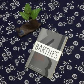 BARTHES : A LOERS DISCOURSE