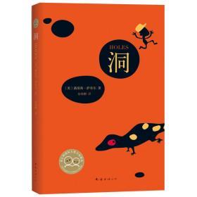 萨奇尔 洞 书籍童书正版图书《洞》美国儿童文学作家路易斯·萨奇尔著 获纽伯瑞儿童文学金奖 11-12-14周岁青少年初中生南海出版社