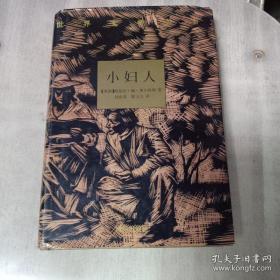 9787805676241/世界文学名著--小妇人(精装版)/[美]路易莎·梅·奥尔科特 著