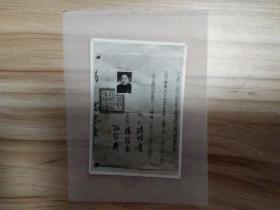 解放初期武汉市人民政府卫生局颁发给张履文的临时考试及格证明书(照片件),卫生局长洪明贵,杨桂生,孙家齐。包快递发货。
