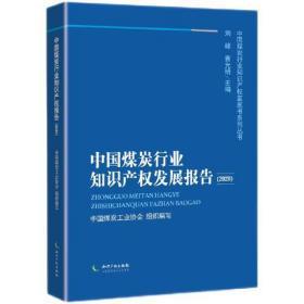 中国煤炭行业知识产权发展报告