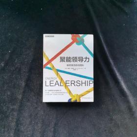 聚能领导力 如何激活你的团队