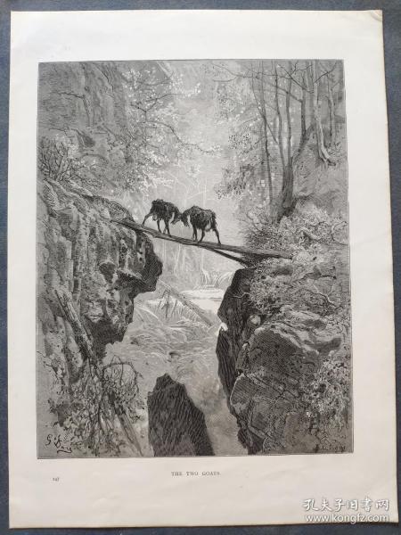 十九世纪 古斯塔夫·多雷 木口木刻 木版画247- 《THE TWO GOATS》190905
