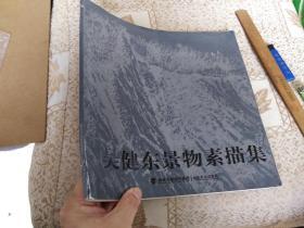 吴健东景物素描集