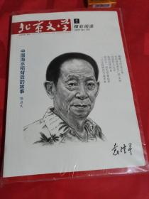 北京文学中篇小说月报2021-1