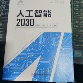 人工智能2030