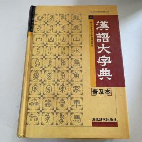 汉语大字典:普及本