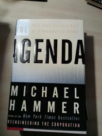 The Agenda: What Every Business Must Do to Dominate the Decade/Michael Hammer 原版精装