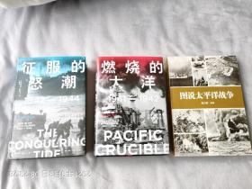 """太平洋战争经典书籍17本(包括《大东亚战争全史上中下》《燃烧的大洋》《征服的怒潮""""《日本帝国的兴亡》上中下《太平洋战争》上下《莱特湾大海战》《日本帝国的衰亡》上下《中途岛奇迹》《冲绳岛》《尼米兹》《图说太平洋战争》等)"""