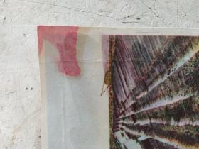 抗美援朝军邮明信片二张,5.7编号