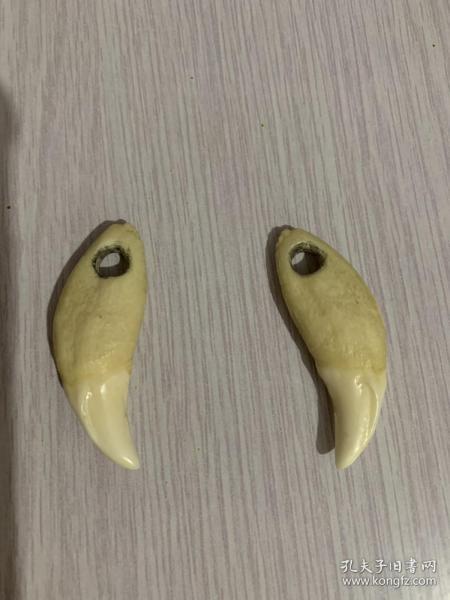 狼牙或者熊牙两个,在家收藏几十年,避邪之物,挂在车里或者身上相当避邪