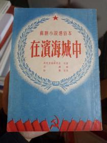 苏联小说通俗本在滨海城中