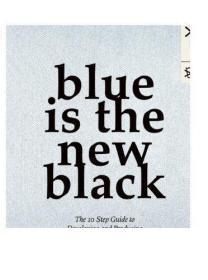 英文原版 Blue is the New Black: The 10 Step Guide to Develop