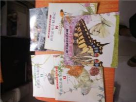 熊田千佳慕的世界 彩绘法布尔昆虫记  1 2 3 4 5 全五册 合售包邮