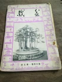盆栽(十四卷、五号)