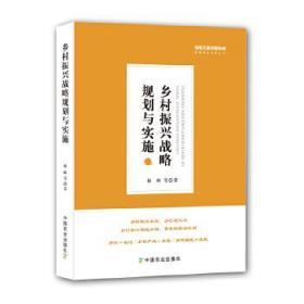 乡村振兴战略规划与实施/绿维文旅控股集团绿维开发运营丛书