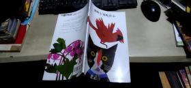 猫咪午餐吃什么(平装12开   2011年10月1版1印   有描述有清晰书影供参考)
