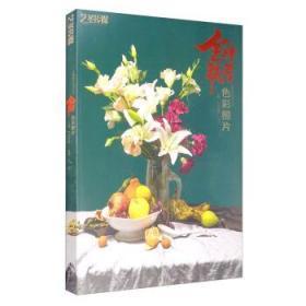 全新正版:金牌联考色彩照片 艺圣传媒主编 中国书店9787514925289
