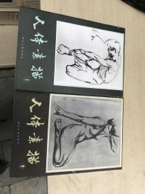 人体素描  第一集  第二集  1、2  合售  1983年一版一印