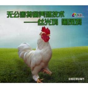 无公害特禽养殖技术·丝光鸡  黑凤鸡