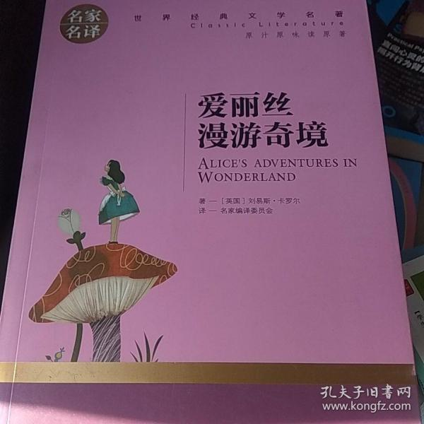 爱丽丝漫游奇境 中小学生课外阅读书籍世界经典文学名著青少年儿童文学读物故事书名家名译原汁原味读原著