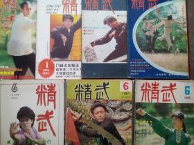 精武 杂志,1984-1999年,15本不同期,武术,功夫,拳