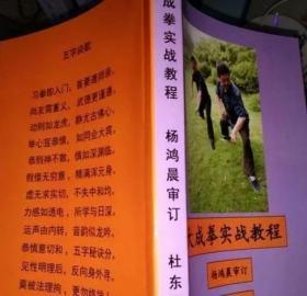大成拳实战教程 修订版  杨鸿晨传 杜东儒著