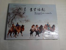 蒙古骆驼——阿拉腾宝音摄影作品 平装