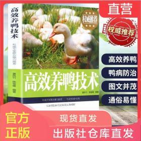 正版高效养鸭技术书籍大全鸭病诊断与防治养鸭饲料配方养殖书大全