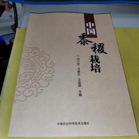 中国黍稷栽培