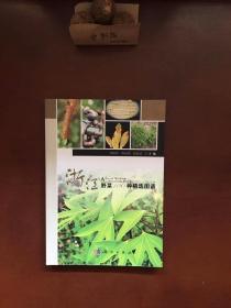 浙江野菜100种精选图谱