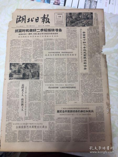 湖北日报1963年7月13日(4开四版)(有破损)湖北省实现跨省供货 做好二季稻插秧准备