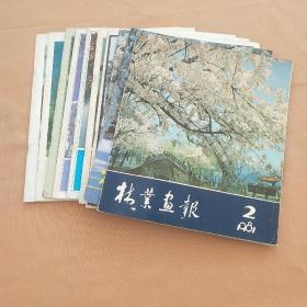林业画报 1981年第2期、1983年第1、2期、1984年第1、2、3、4期、1985年第2、3、4期 (共10本合售)