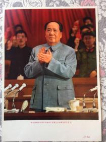 伟大领袖毛主席在中国共产党第九次全国代表大会上