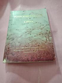pond fⅰsh culture chinα  中国池塘养鱼