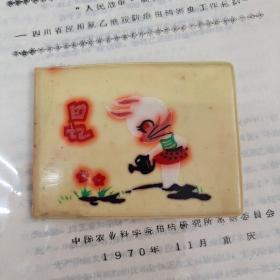 《塑料老日记本》 g2