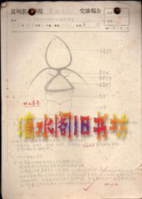 1963年9月12日至1964年6月4日昆明农林学院普通昆虫学实验报告手稿22页(铅笔书写,江教授红笔批改)
