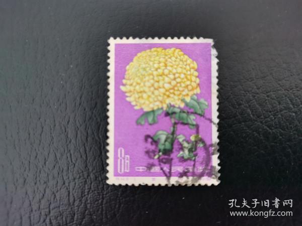 中国邮票(花卉):特44 菊花 信销1枚 (18-6.右上角缺肉,背揭薄)