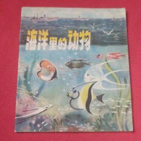 大版本连环画    海洋里的动物