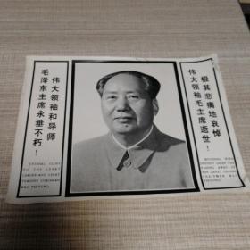 毛泽东画片