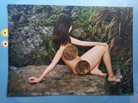 人体艺术拍摄原照(一张)【3792-32】