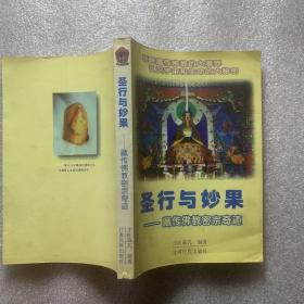 圣行与妙果:藏传佛教密宗奇迹