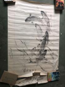 铅笔画 九鱼图