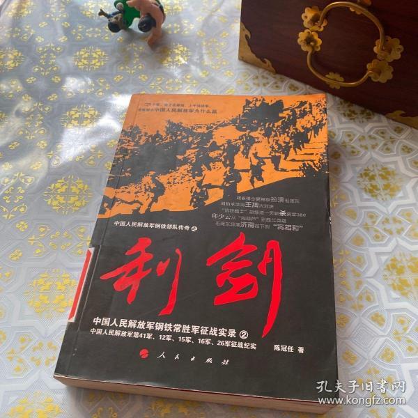 中国人民解放军钢铁常胜军征战实录:利剑2